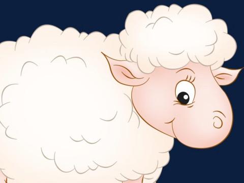 女生属羊几月份最不好运势差?