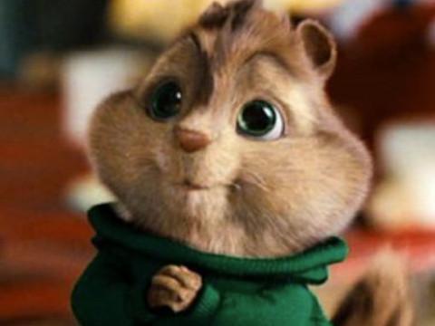 属鼠的男人太可怕了脾气性格如何运势好吗?