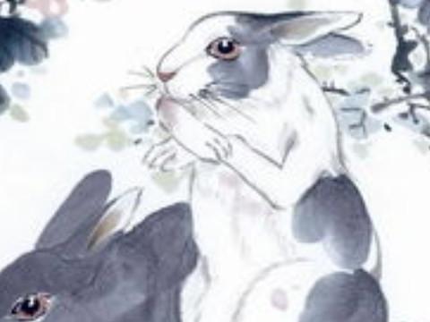 属兔男对小三有感情吗会死灰复燃吗?