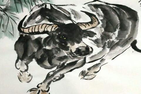 属牛人2021本命年可以参加婚礼吗?本命年参加婚礼注意事项