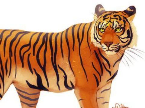 1998属虎的女人性格和脾气好不好?