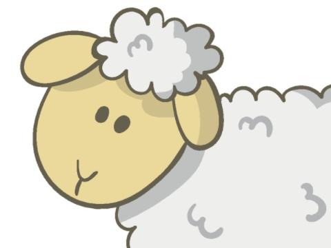 79年属羊的婚姻感情运势怎么样?