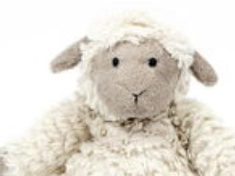 属羊正月出生命运如何命好吗?