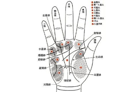 中年运势好的手相 中年发达的手相特征有哪些