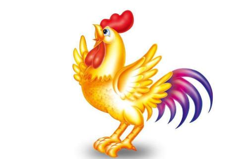 几月出生的属鸡人命运差  属鸡人命里最苦是几月