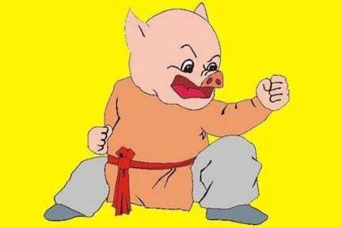 为什么说1995年属猪人27岁是个坎  2022年的命运好不好