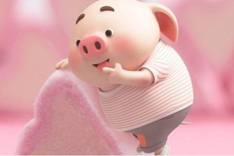属猪人2022年改运方法 属猪虎年如何提高运势