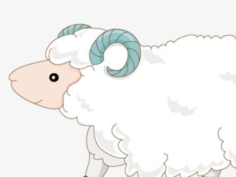 1991女属羊一生大劫年是什么时候 如何化解?