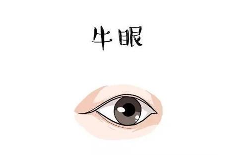什么样的眼型有福气 有福气的眼型特征