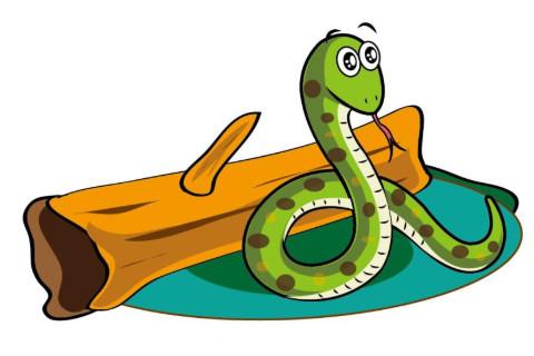 属蛇人和什么属相相配相克 和属蛇人不合的生肖