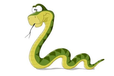 2022年属蛇人刑太岁 生肖蛇虎年犯太岁如何化解
