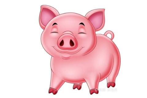 属猪人2022年谁都躲不过的劫难 属猪人如何化解这一劫难