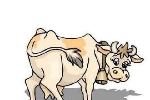 2009年属牛人2022年运势及运程 13岁属牛人虎年运势解析